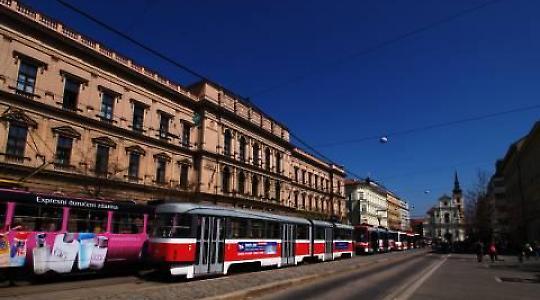 Letzte Station des Vertrages: Das tschechische Verfassungsgericht in Brünn <br/>Foto von Johny hanging head down from the tree