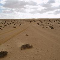 In der lybischen Wüste