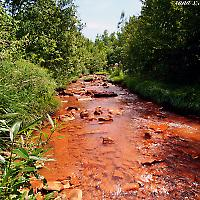 """Acid Mine Drainage in """"natürlicher Umgebung"""""""